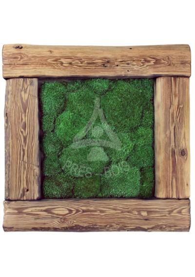 Obraz poduszka jasna stare drewno