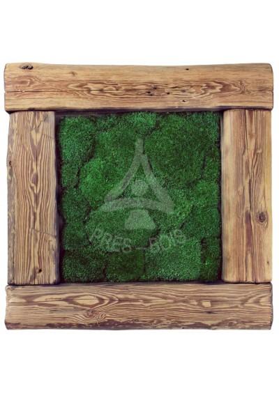 Obraz poduszka ciemna stare drewno